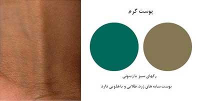رنگ پوست,زمینه رنگ پوست ,آرایش شیک