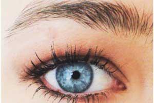 آرایش چشم,آرایش چشم قهوه ای, آرایش صورت