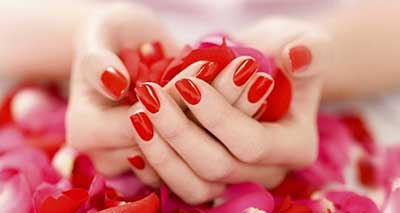 سلامت پوست|فواید گل رز برای پوست و زیبایی