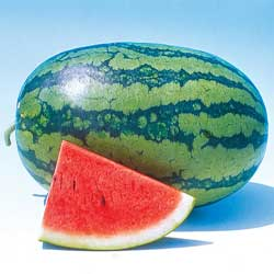 میوه های مفید