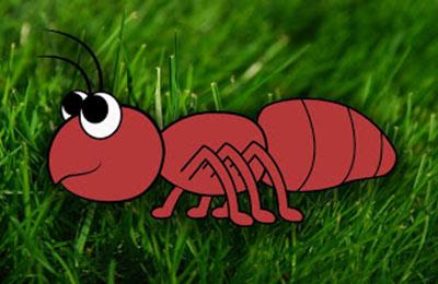آموزش مراحل کشیدن نقاشی مورچه
