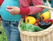 بارداری,تغذیه بارداری,غذای زن باردار