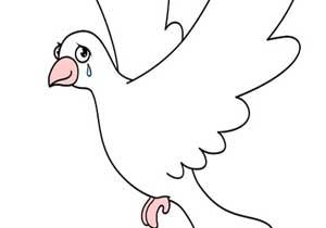 شعر کودکانه, شعر کودکانه کبوتر پر شکسته