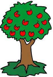 وبلاگ فریازان - سیب آدم