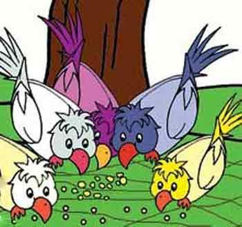 قصه,قصه کودکانه, داستان اتحاد کبوتران