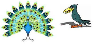 قصه ی کوتاه «طاووس و کلاغ»