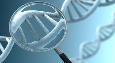 ازدواج فامیلی آزمایش ژنتیک,آزمایش ژنتیک ازدواج فامیلی