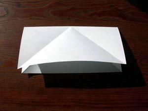 ba4244 3 - قورباغه ی جهنده ی کاغذی