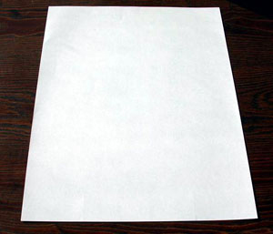 ba4244 - قورباغه ی جهنده ی کاغذی