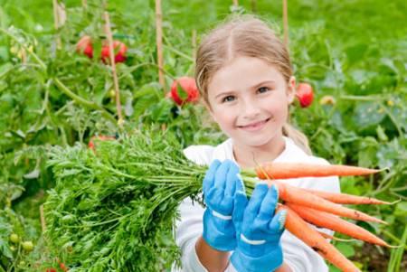 خواص هویج,خواص هویج برای کودکان,فواید هویج برای کودکان