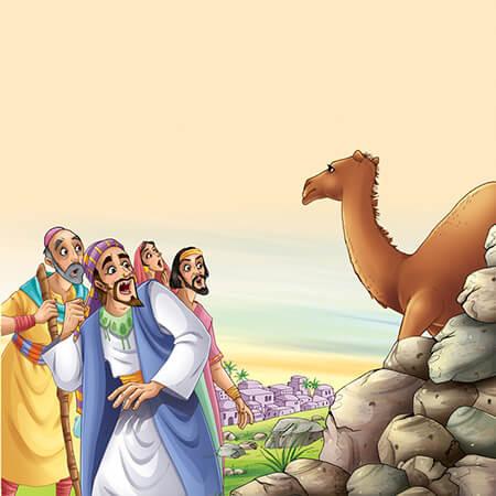 قصه های قرآنی کوتاه کودکانه, معرفی قصه های قرآنی کودکانه, قصه های قرآنی کودکانه آموزنده