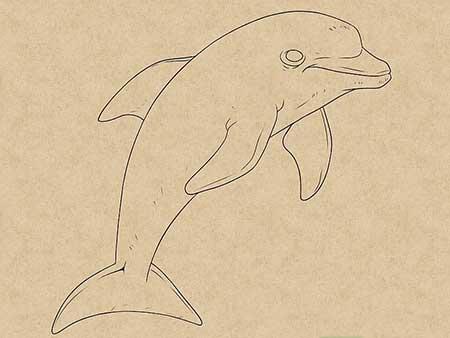 نقاشی دلفین,نحوه کشیدن نقاشی دلفین,آموزش کشیدن نقاشی دلفین