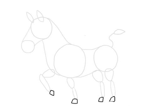 نقاشی گورخر,مراحل کشیدن نقاشی گورخر,آموزش نقاشی گورخر