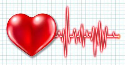 قلب جنین در چند هفتگی