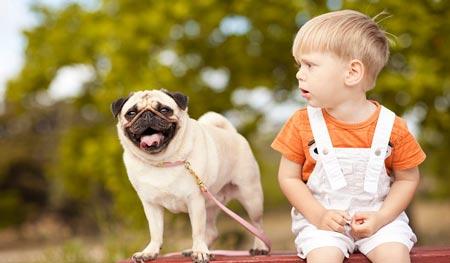 ترس از حیوانات در کودکان,ترس کودکان از حیوانات,ترس از حیوان