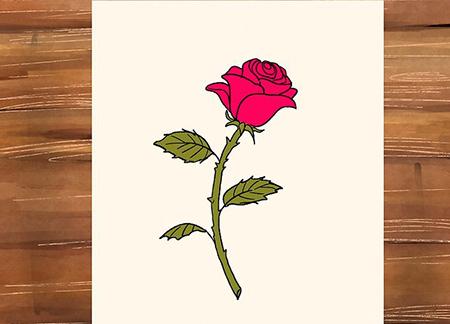 نقاشی گل رز,نقاشی گل,طراحی گل