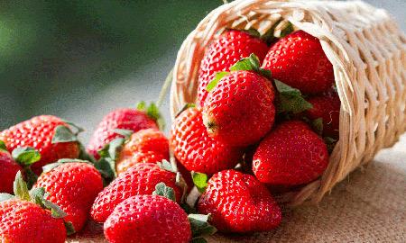 توت فرنگی برای کودکان زیر 2 سال,توت فرنگی برای کودکان,میوه های ممنوع برای کودکان زیر یک سال