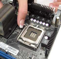 نصب مادربورد, پردازنده ی مرکزی