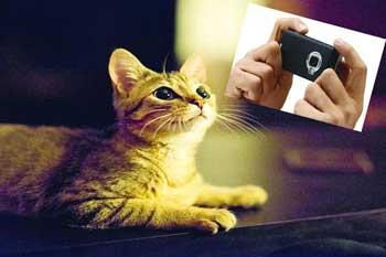 دوربینهای دیجیتال, دوربین های عکاسی, لنز دوربین
