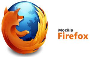 افزونه های فایرفاکس, ترفندهای اینترنتی, رمز عبور