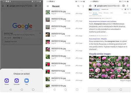 موتور جستجو, جستجوی عکس گوگل, افزونه فایرفاکس