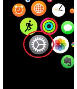 روش کار با اپل واچ,امکانات اپل واچ,Apple Watch