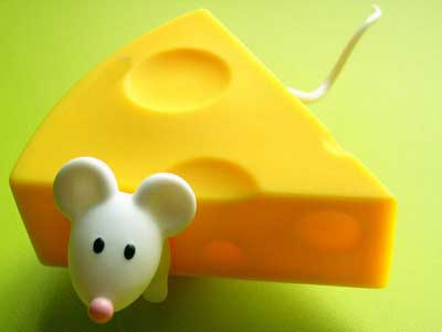 آشنایی با خواص پنیر