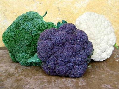 خواص انواع خوراکی ها,معرفی خوراک های ضد سرطان
