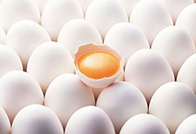 جلوگیری از فاسد شدن مواد غذایی,علت فاسد شدن مواد غذایی در یخچال