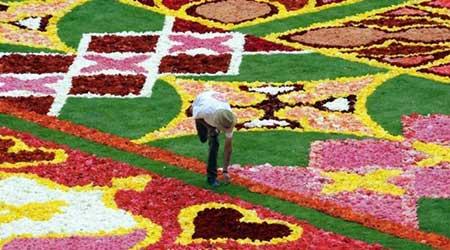 فرشی شگفت انگیز از گل ؛ نه با تار و پود !