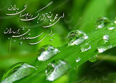 اشعار شفیعی کدکنی, ای مهربان تر از برگ