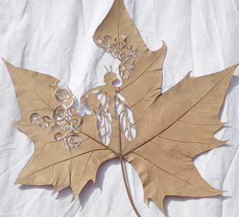 هنرنمایی با برگ درخت (عکس)