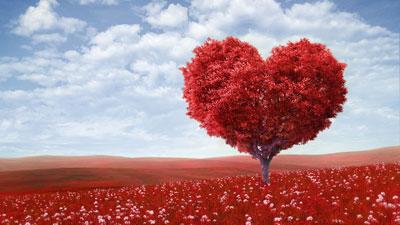 اشعار ولنتاین, شعرهای عاشقانه