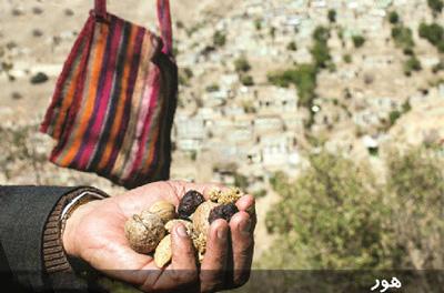 صنایع دستی ایلام,هور بافی