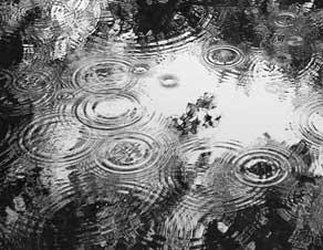 شعر باران (2)