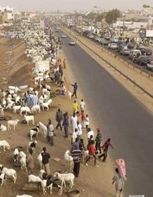فرهنگ و هنر: آداب و رسوم عید سعید قربان در کشورهای مختلف جهان