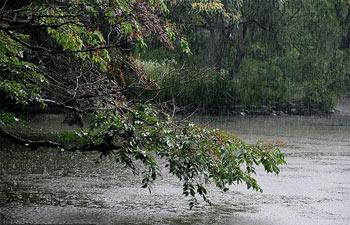 شعر باران,شعرباران,شعر بارانی,شعر بارانی