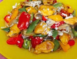 کباب ترکی مرغ ( غذای ترکی )