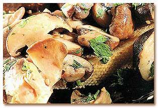 طرز تهیه ساندویچ قارچ و سیر