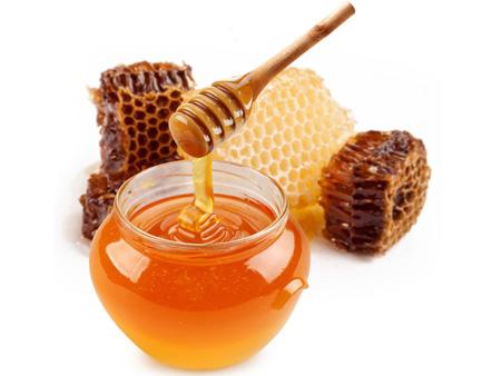 عسل,زنبور عسل,عسل گشنیز