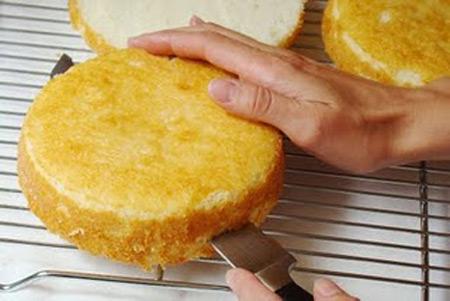 نکته های کیک اسفنجی,طرز تهیه کیک اسفنجی,کیک اسفنجی ساده