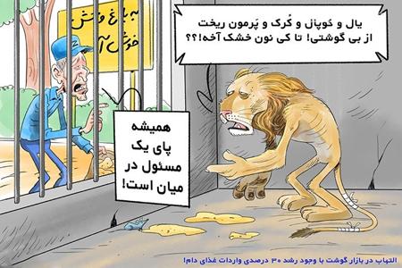 کاریکاتور گرانی, کاریکاتور های سیاسی