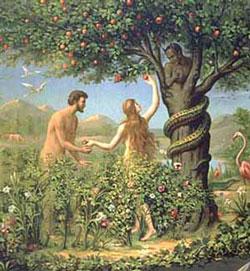 نتیجه تصویری برای آدم و حوا