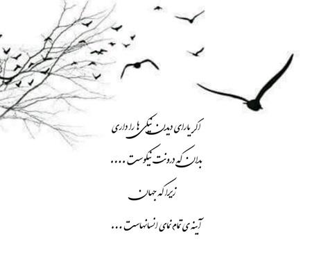 جمل های زیبا و خواندنی, جمل های با معنی
