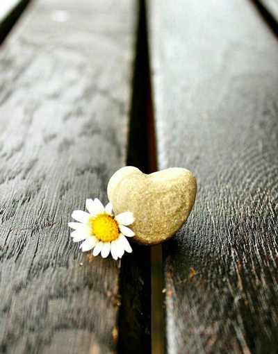 جملات الهام بخش برای زندگی,جملات زیبا در مورد زندگی