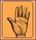فال و طالع بینی , انواع فال , شست دست