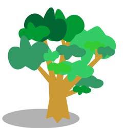 شخصيت شناسي با درختان