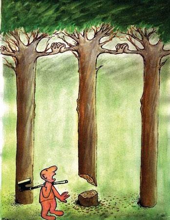 روز درختکاری, درخت, 15 اسفند
