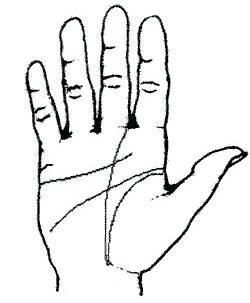 فال و طالع بینی, آموزش کف بینی, کف دست