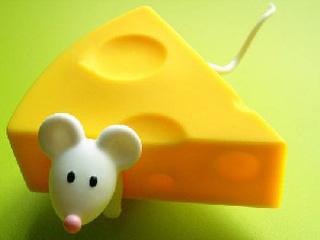 فال جدید, طالع بینی جدید, پنیر تبریزی